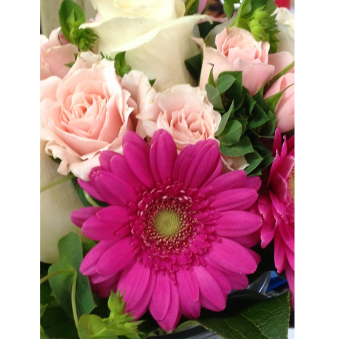 Hot pink gerber daisies, pink spray roses, white roses and bluporum prom bouquet