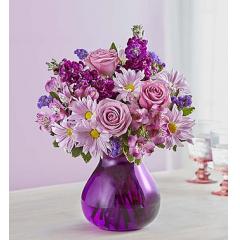Lavender Dreams - As Shown
