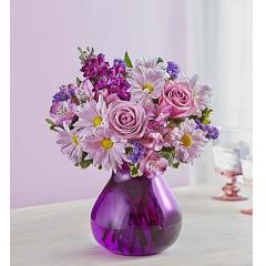 Lavender Dreams - Small