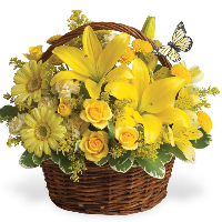 The San Pedro Basket Arrangement