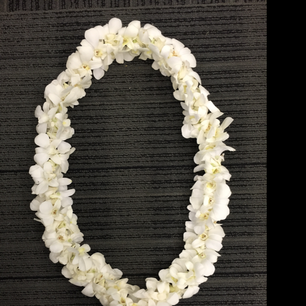 Double Orchid Lei- White