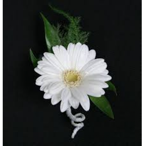 The Gerbera Daisy Boutonnière