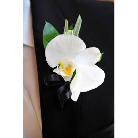 The Phalaenopsis Orchid Boutonnière