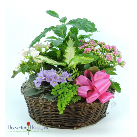Garden Basket Large