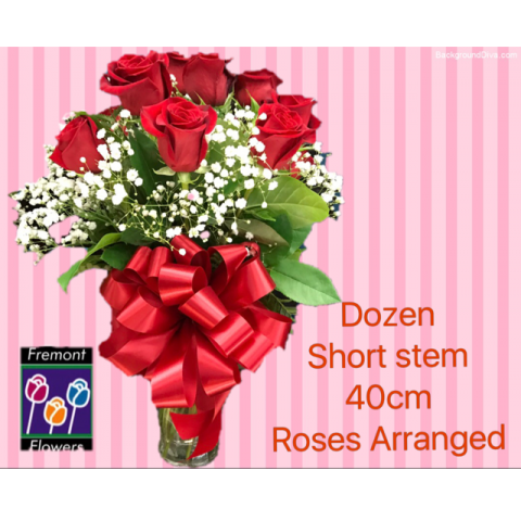 Fremont Flowers Red short stem roses 40 cm