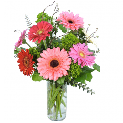 The Gerbera Daisy Bouquet