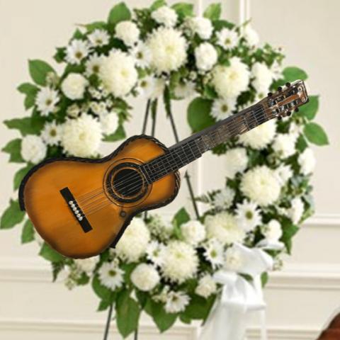 Musician Guitar tribute