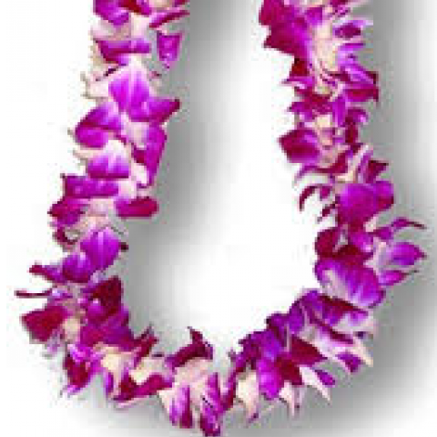 Purple dendrobian lei