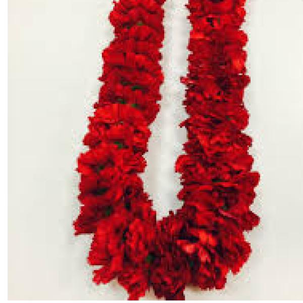 Carnation leis