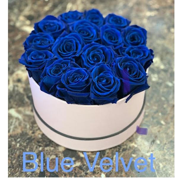 The Blue Velvet