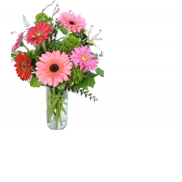 The Gerbera Daisy Bouquet