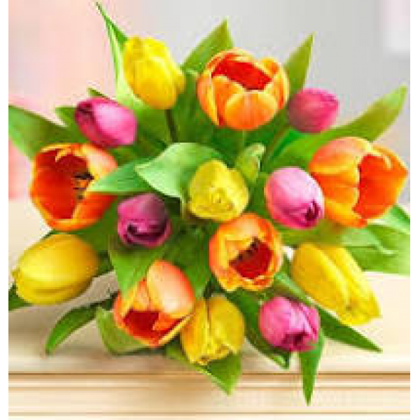 Tulips Wrapped:Pickup only
