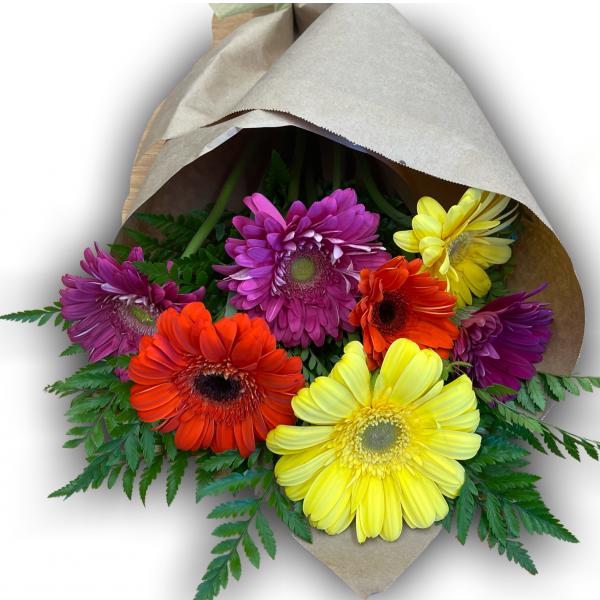 Gerbera Daisy Wrap Bouquet