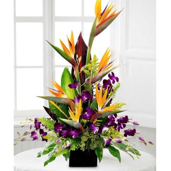 Modern Birds & Orchids