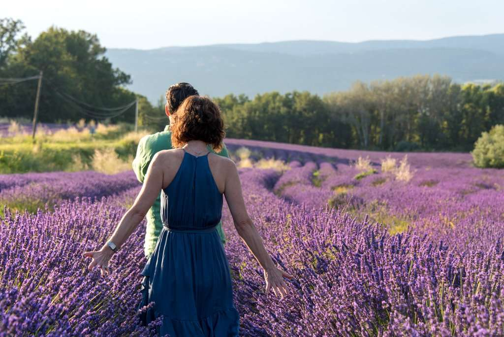 Finding Beauty and Inspiration in Provence