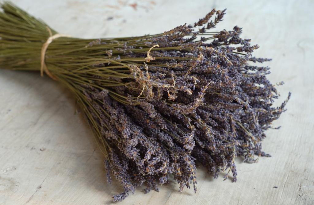 Dried Lavender from the South of France Alternative Image