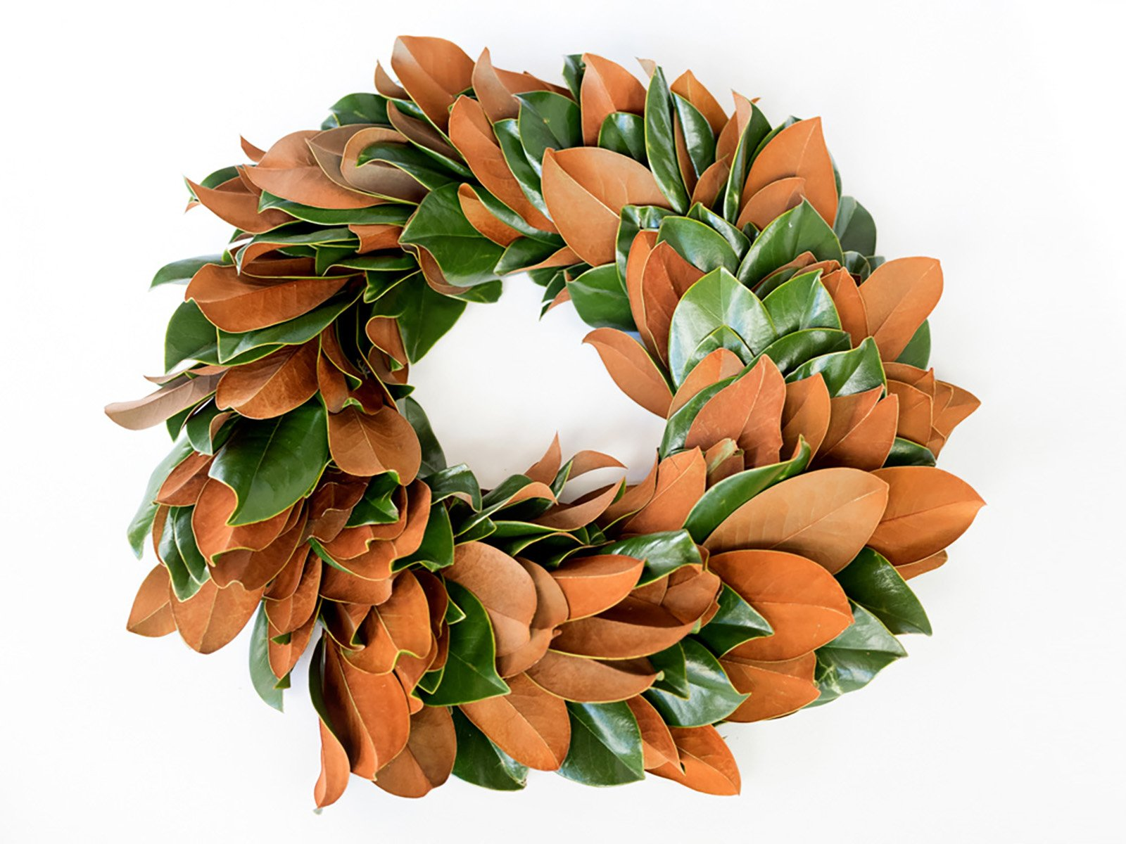 Magnolia Wreath and Garland