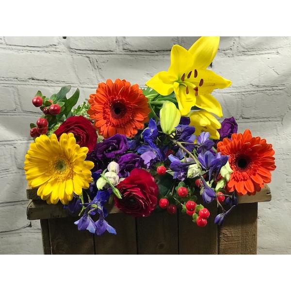 Designers Choice - Vibrant Blooms