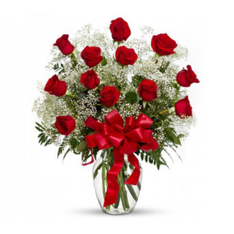Classic Dozen Red Premium Roses