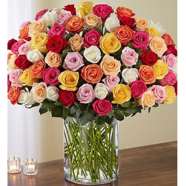 100 Mixed Roses