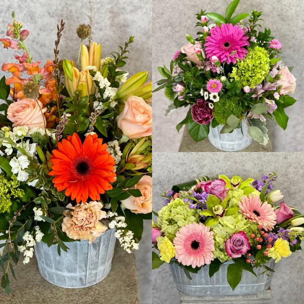 Blooming Bucket Designer Choice