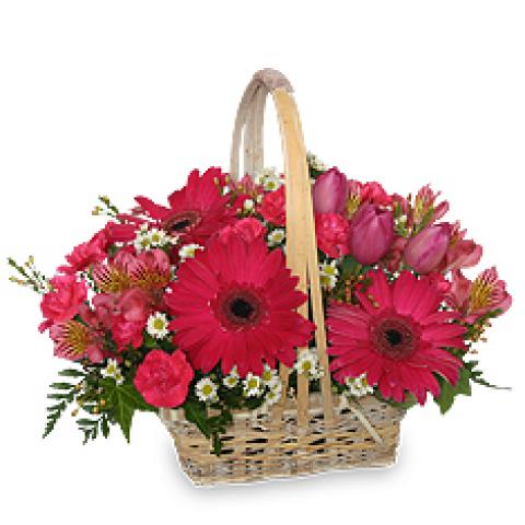 FSN Best Wishes Basket