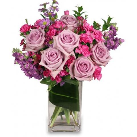 FSN Lavender Luxury