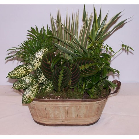 Rustic Woodland Planter