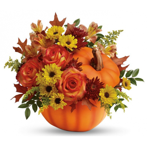 JAC Festive Pumpkin