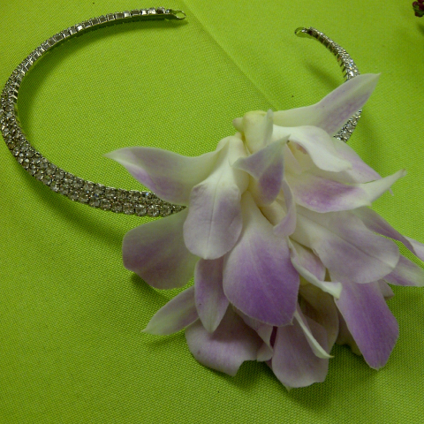 Jacques Flower Shop - Manchester JQP Dendrobium Orchid Bling Headband