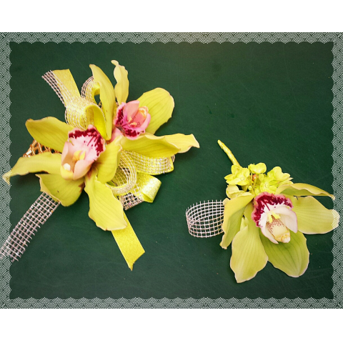 Jacques Flower Shop - Manchester JQP Tropical Cymbidium Pair