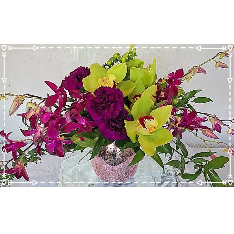 Jacques Flower Shop - Manchester JQ Cascading Orchids