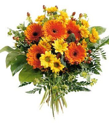 Jacques Flower Shop - Manchester JQ 7261 Bold & Beautiful Hand Bouquet