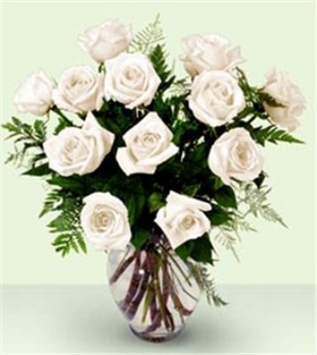Jacques Flower Shop - Manchester JQ Enchanting Rose Bouquet PREMIUM