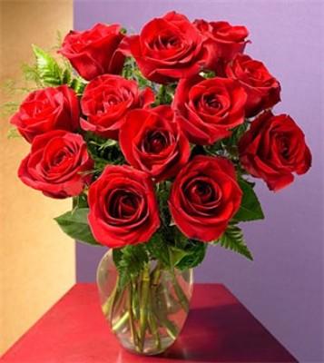 Jacques Flower Shop - Manchester JQ MEDIUM Roses Arranged