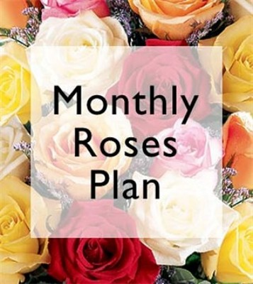 Jacques Flower Shop - Manchester JQ Monthly Rose Plan