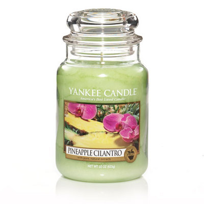 Jacques Flower Shop - Manchester Yankee Candle Pineapple Cilantro Jar