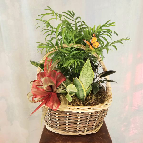 Lasting Joy Basket Garden