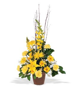 Vibrant Yellow Slumber Room Arrangement