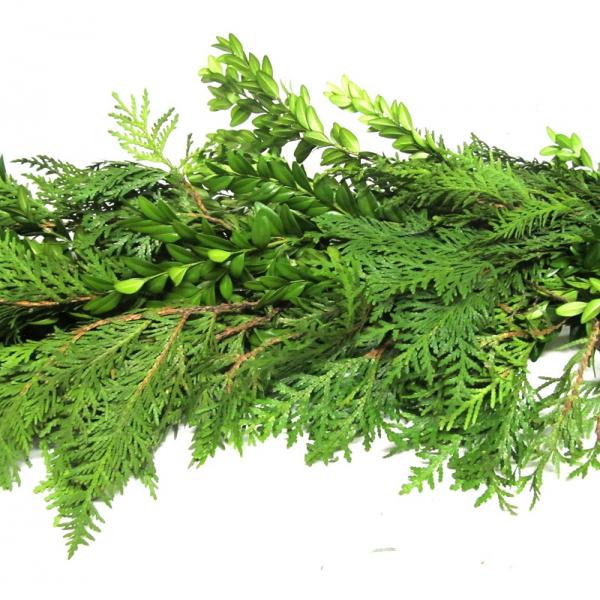 Fresh Premium Evergreen Garlands