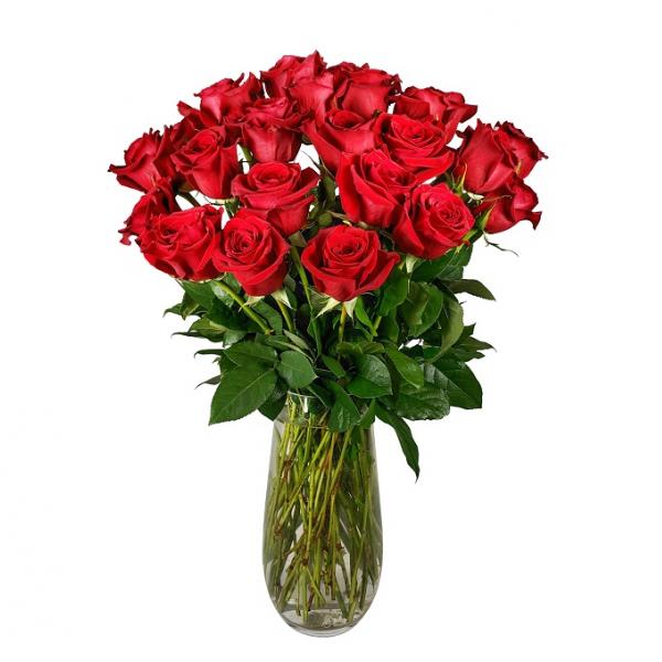 Classic Double Dozen Roses