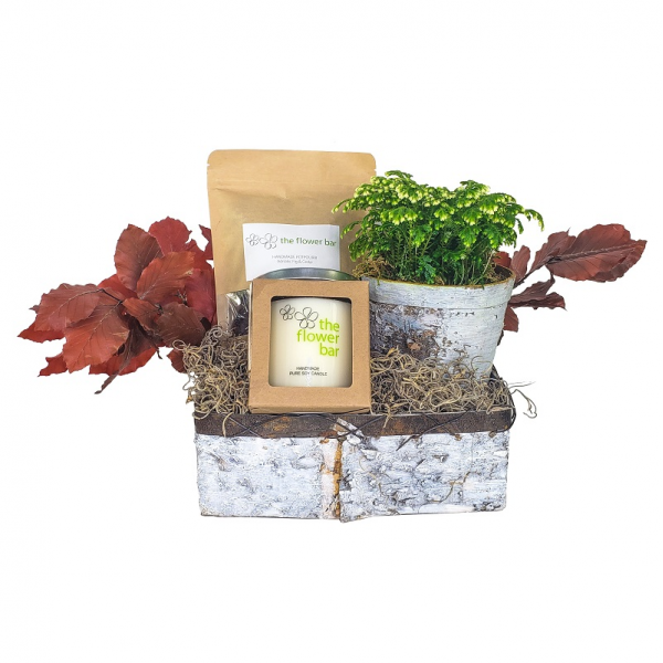 Fall Birch Gift Set with Fern