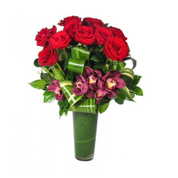 Modern Rose Extraordinaire