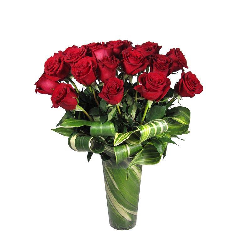Modern Double Dozen Roses