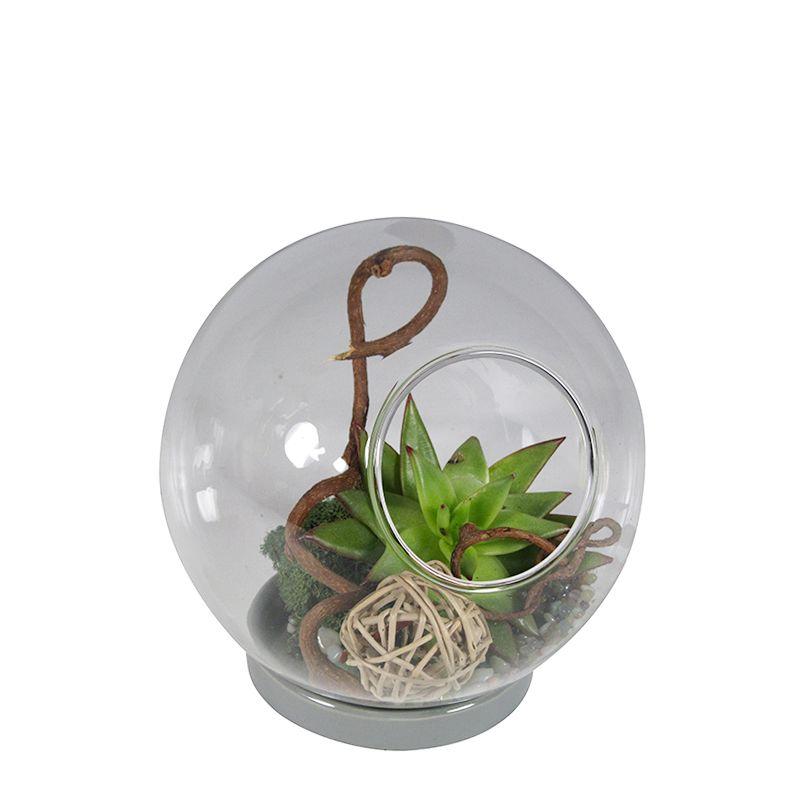 Mini-Succulent Terrarium