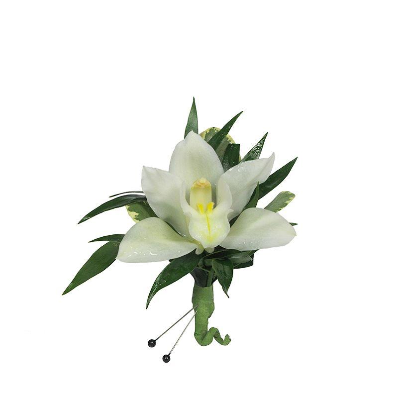 White Mini-Cymbidium Orchid Boutonniere
