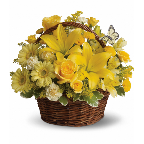 Yellow Butterfly Basket