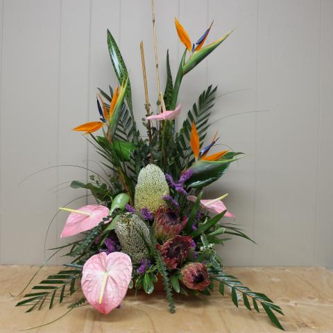 Custom Tropical Arrangements