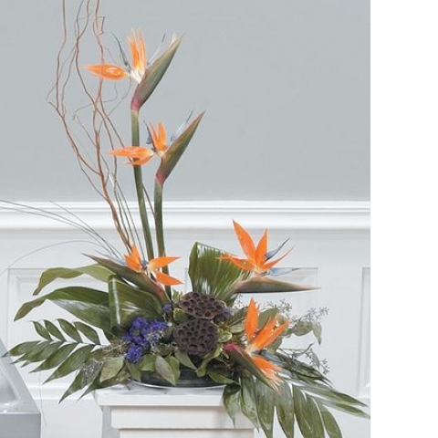 Tropical Pedestal Arrangement CTT89-11