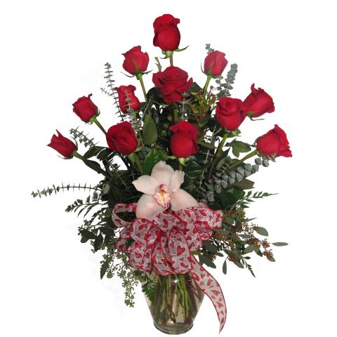 Premium Valentine Dozen Roses